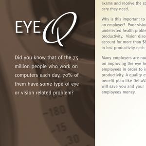 Delta Vision Brochure